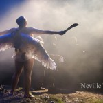 nevilles-island-1w